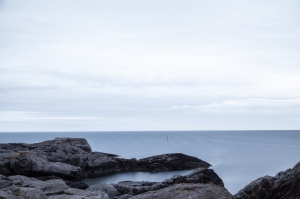 This photo was taken from unsplash.com and is by Dominik Schroder